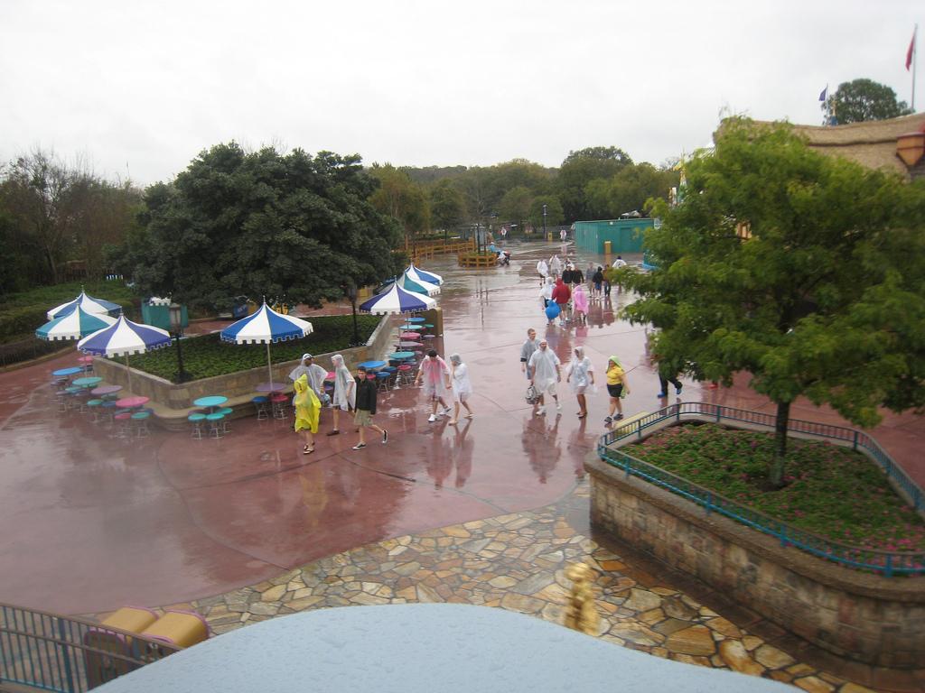 Rainy Fantasyland