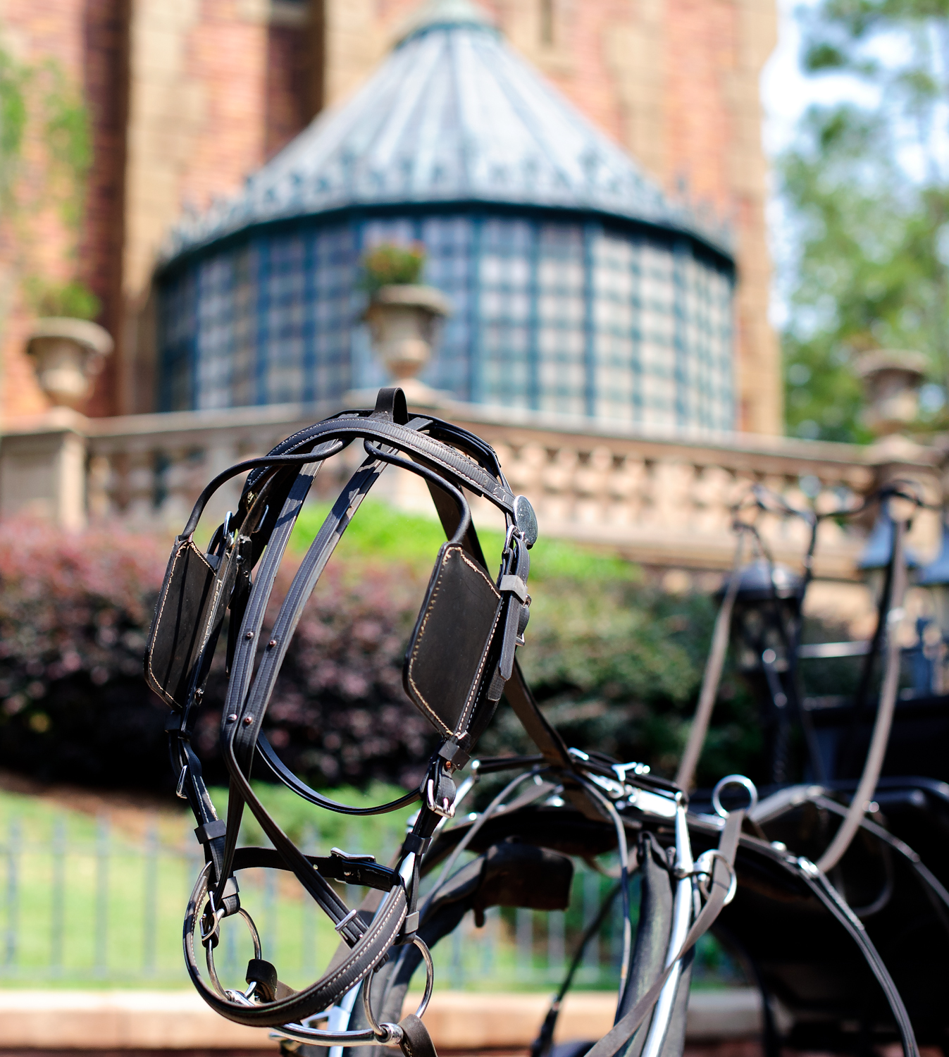 Disney Photography - Haunted Mansion